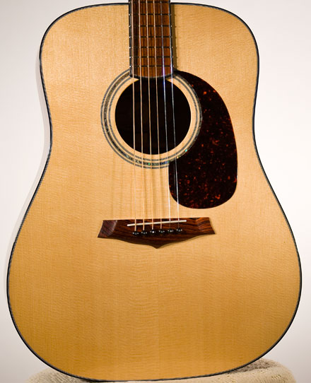 Sitka Spruce Top Photo